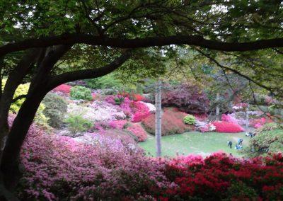 gardens04725