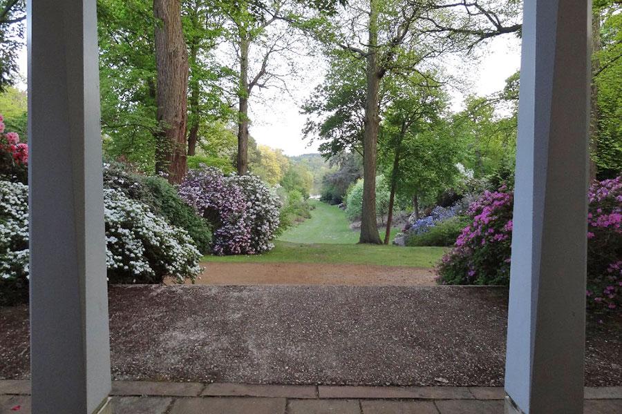 Saville Garden in the Spring