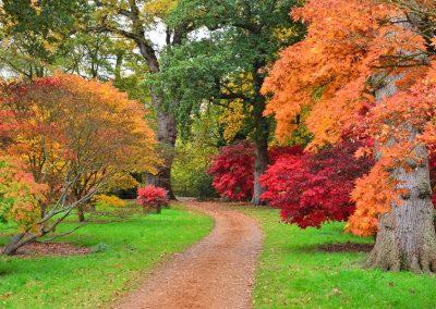 gardens0504